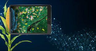 ارائه خدمات کشاورزی دقیق بر پایه دادههای ماهوارهای توسط ایرباس