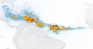 کشف بزرگترین رشد جلبکهای دریایی جهان با ماهوارههای رصد زمین