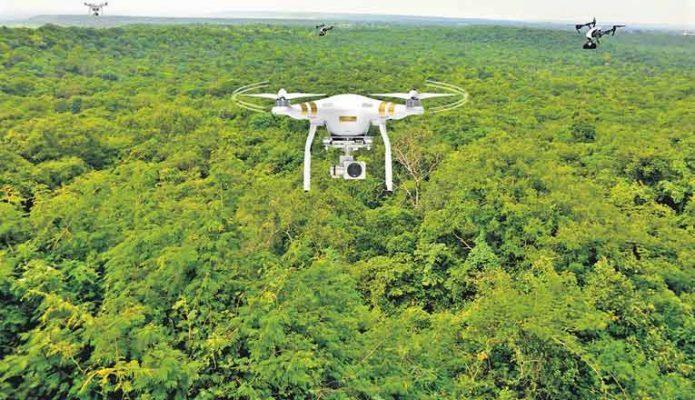 استفاده از پهپادها جهت احیای جنگلها
